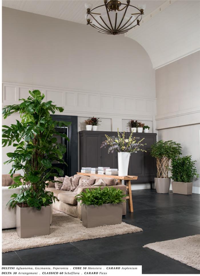 lechuza ruukut. Black Bedroom Furniture Sets. Home Design Ideas